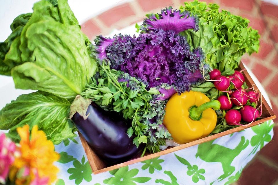 Shop local - Shop Organics