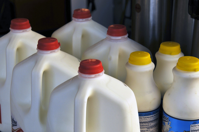 cartons-of-milk.jpg
