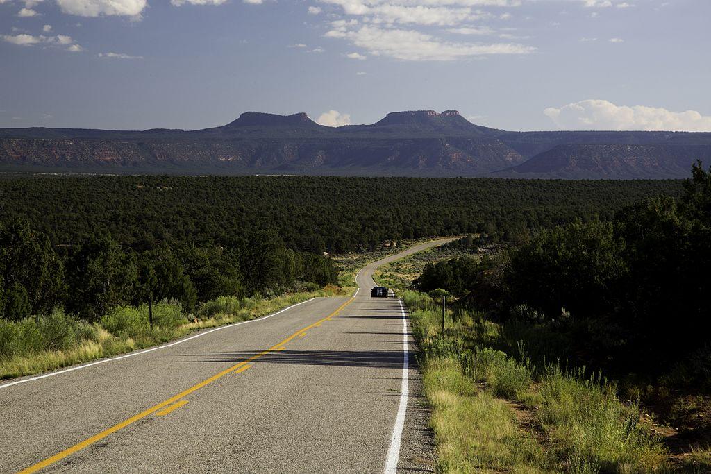 Road_in_Bears_Ears.jpg