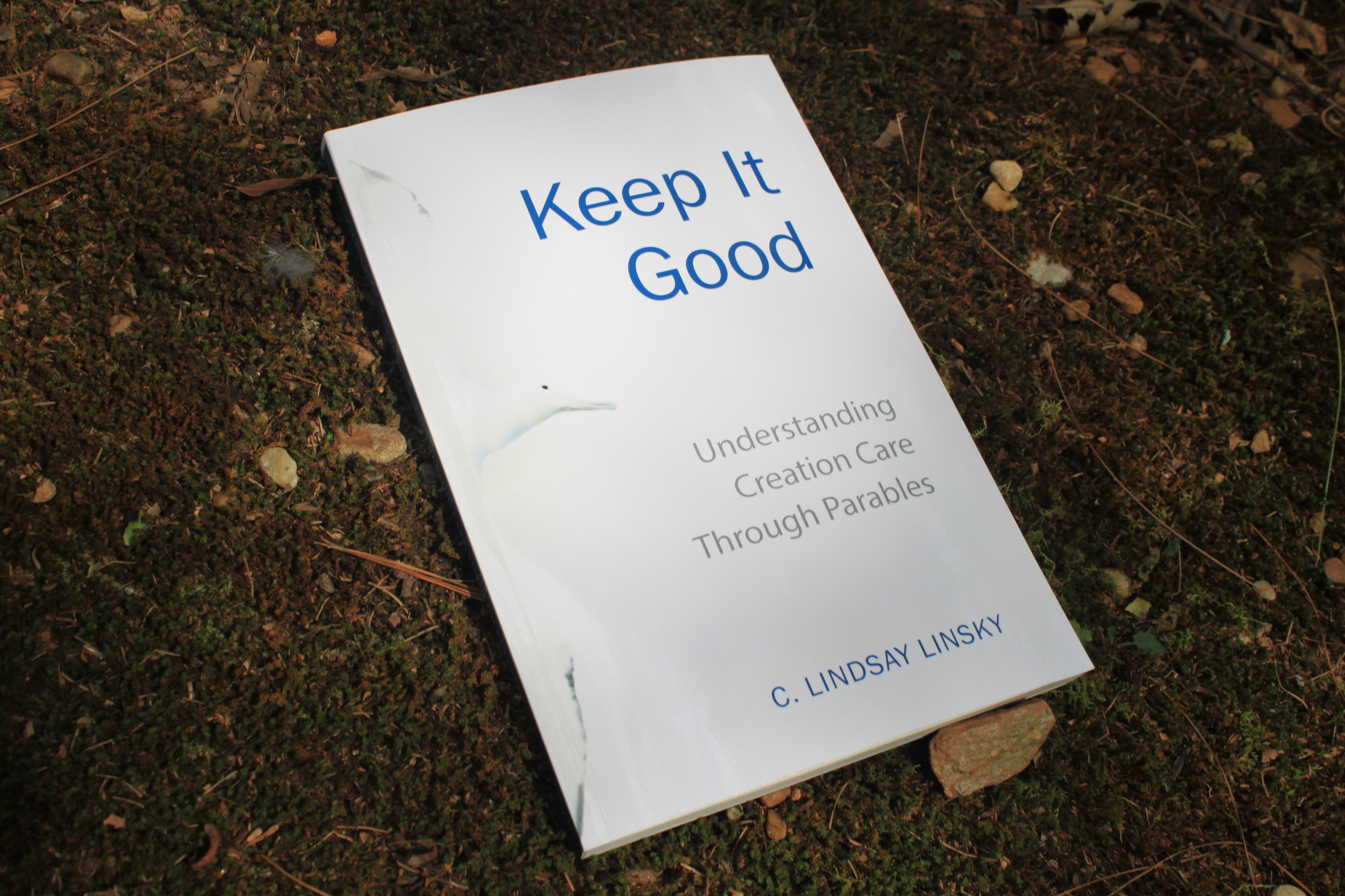 Keep It Good: Understanding Creation Care through Parables