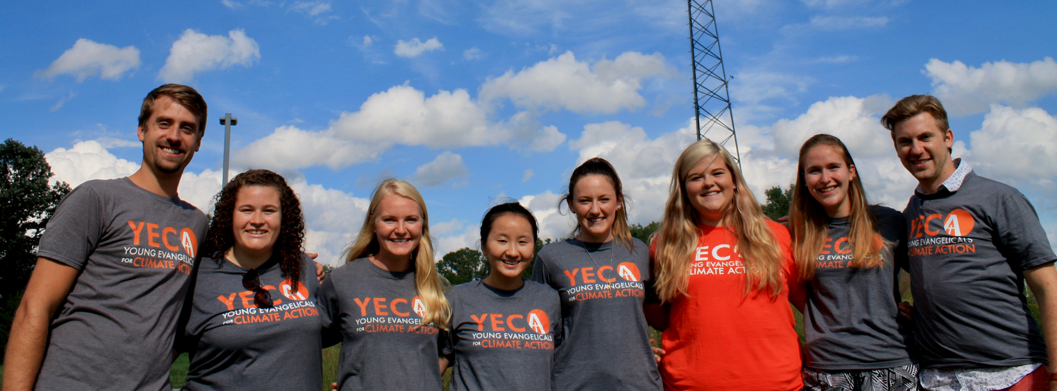 Y.E.C.A. Fellows