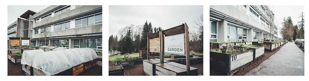 garden_website.jpg