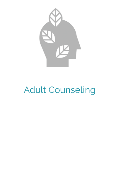 adult counseling