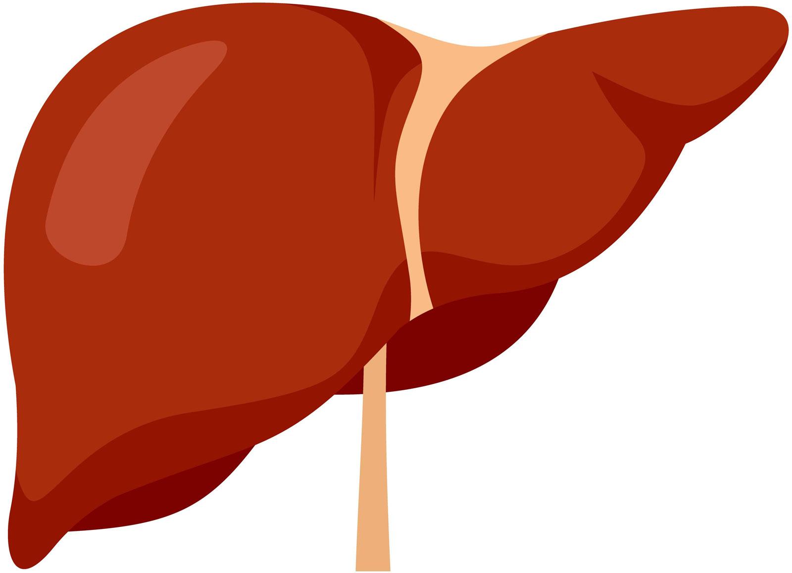 enlarged_kidney_1.jpg