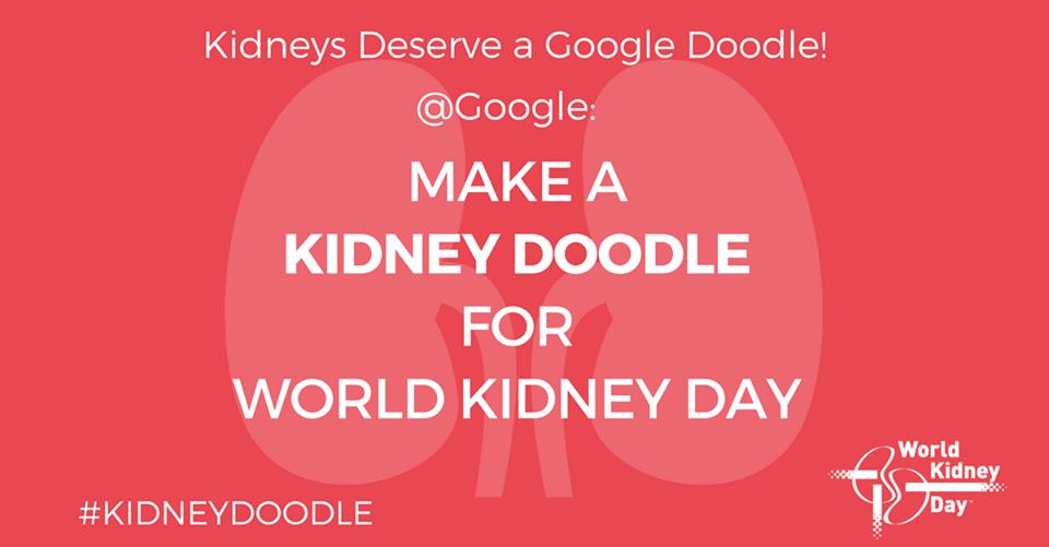 kidney_doodle.png