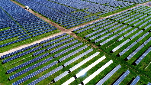 A field of dozens of solar panels aligned neatly in rows, with the sun shining on them