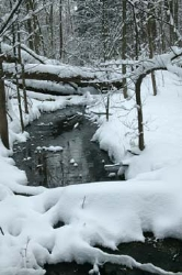 small_Rouge_River_winter.jpg