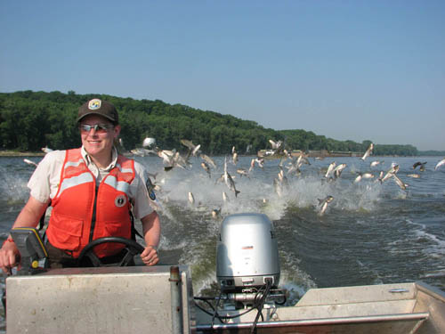 Remarkable, this asian carp park rock starved state was and