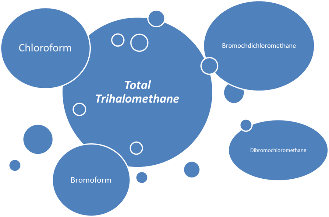 Total Trihalomethane