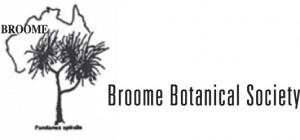 BBS_logo-good-300x140.jpg