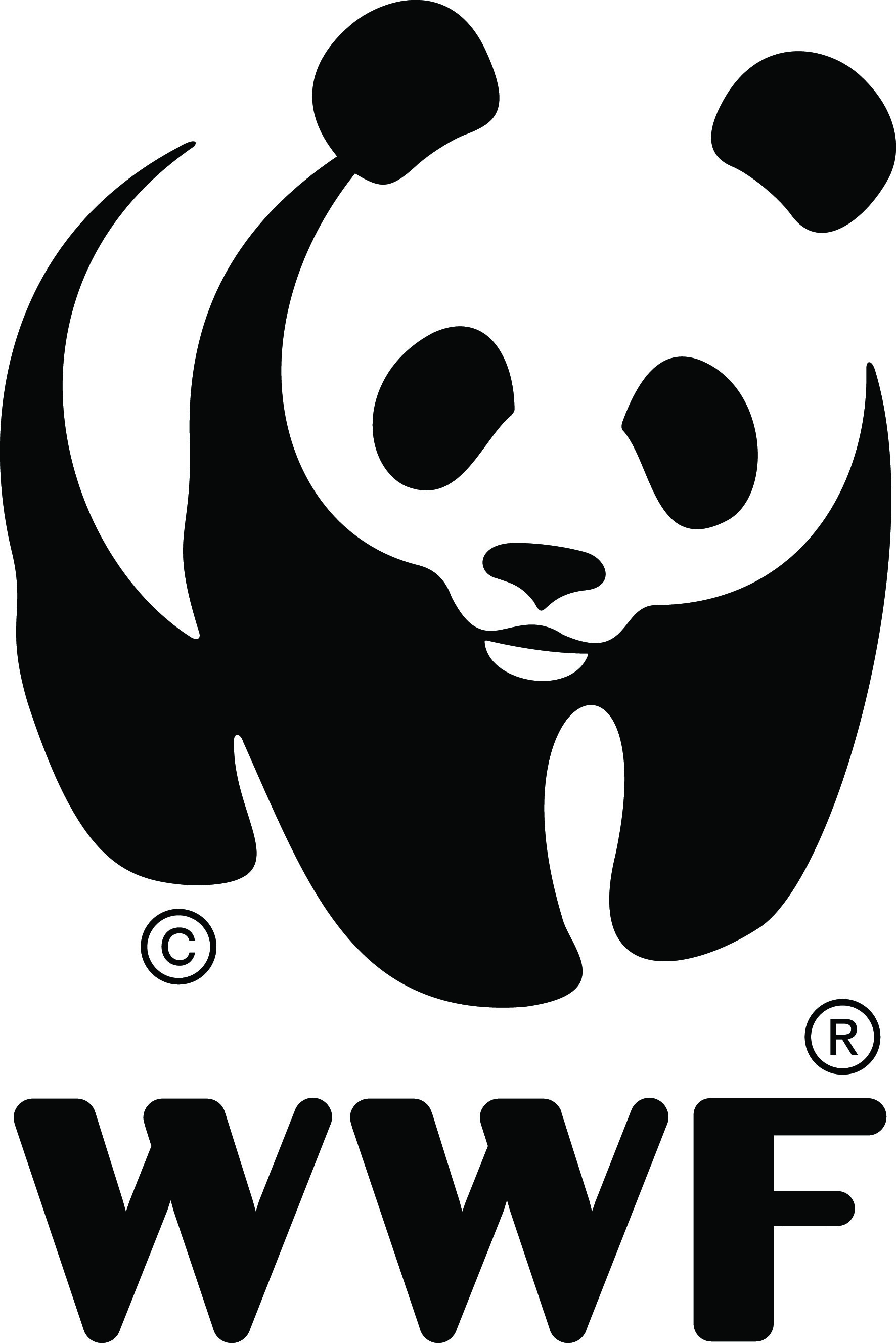 Master_panda_logo.jpg
