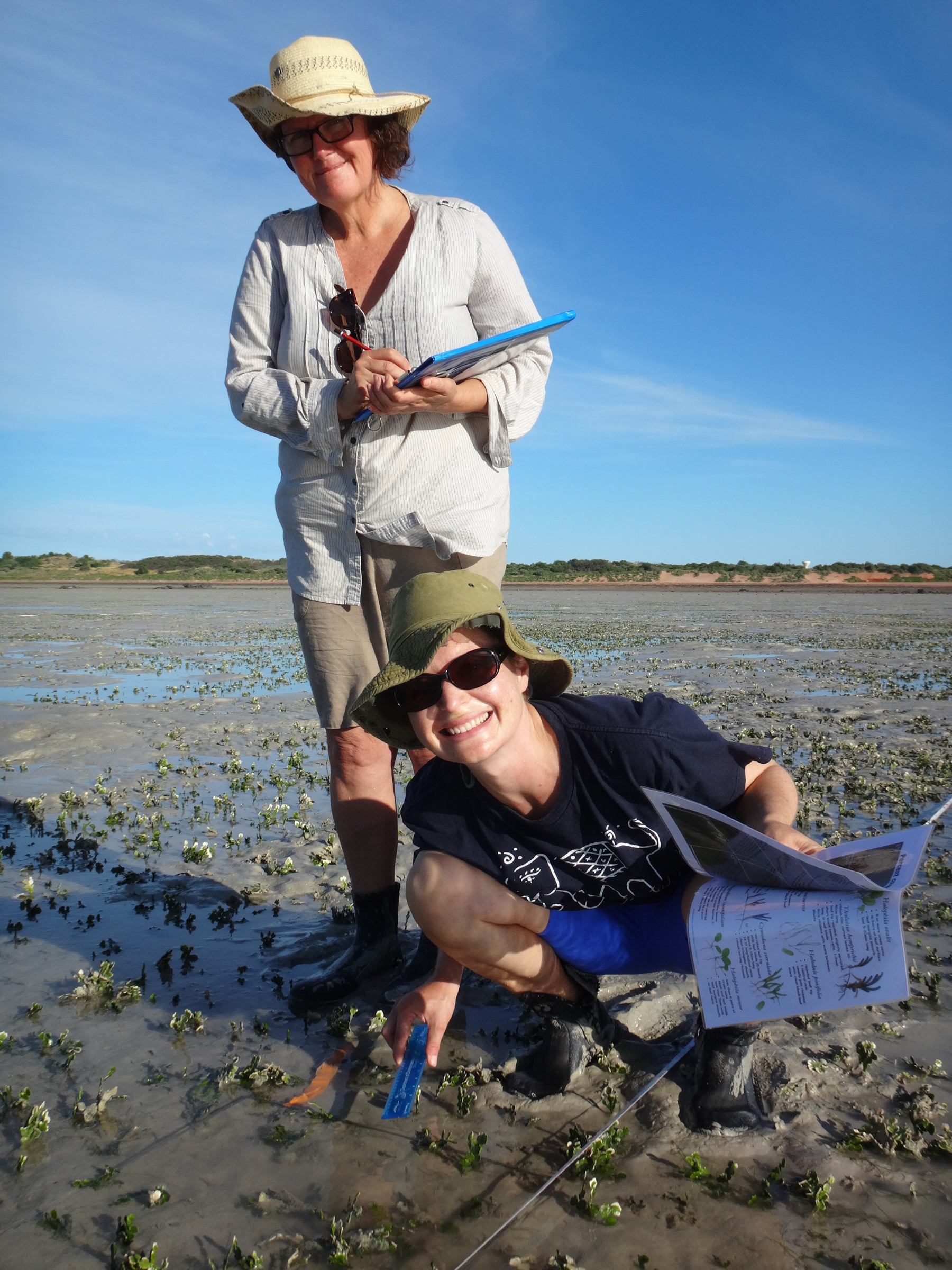 seagrass_monitoring_volunteers-1.jpg