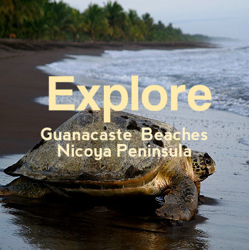 Costa Rica Guanacaste Travel