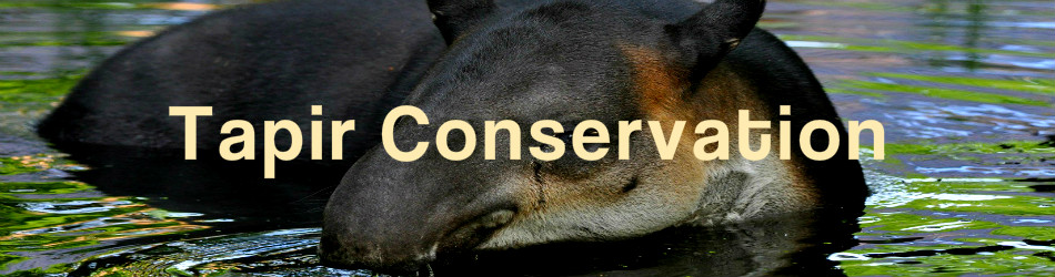 Costa Rica Tapir Conservation