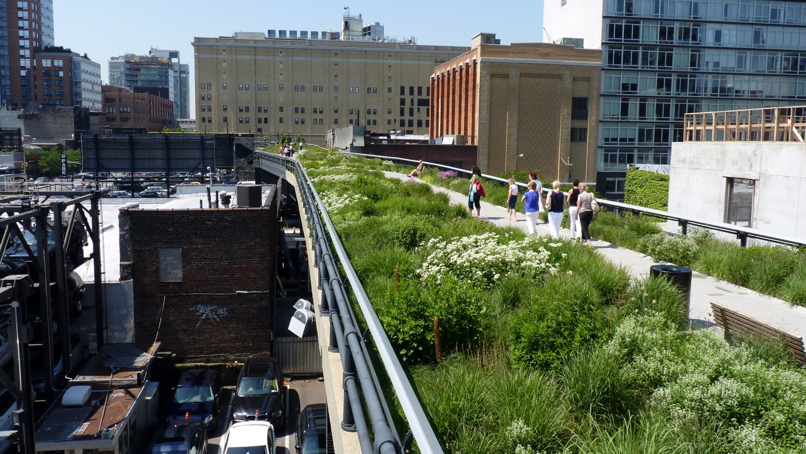New_York_City_NYC_Sustainability_Living_Sustainable_High_Line_Conservation_Environment_1.jpg