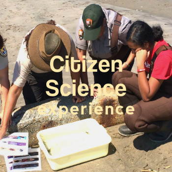 _nations_CitizenScience_experience002.jpg