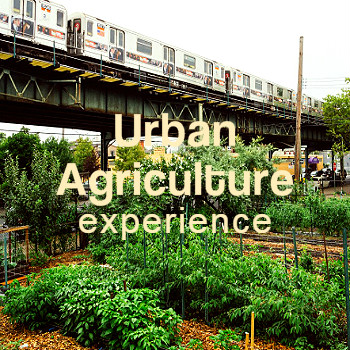 _nations_Urban_Agriculture001.jpg