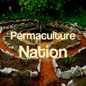 _nations_Permaculature013.jpg