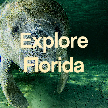 _explore_florida012b.jpg