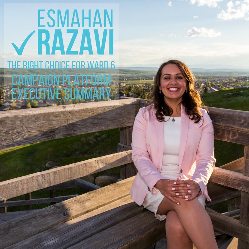 Esmahan_Razavi_Executive_Summary_Image.png