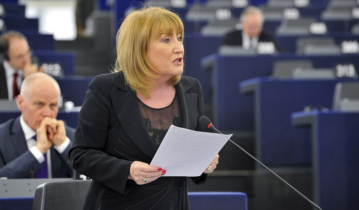 Glenis-Willmott-MEP-plenary-700x410.jpg
