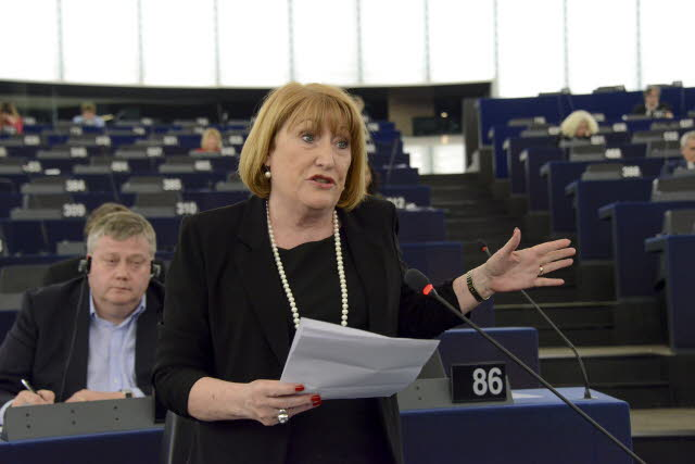 Glenis Willmott MEP