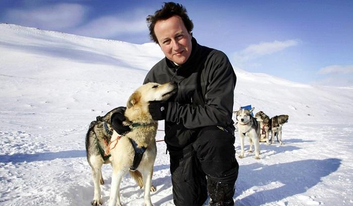 David-Cameron-hug-a-husky-700x410.jpg