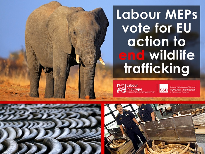 End-Wildlife-Trafficking-report-700x525.jpg