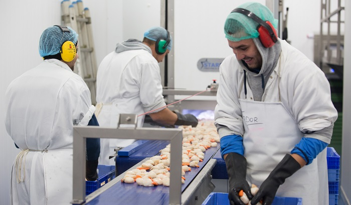 Food-processing-workers-700x410.jpg