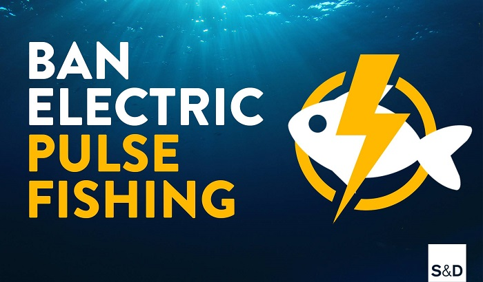Ban-Electric-Pulse-Fishing-700x410.jpg