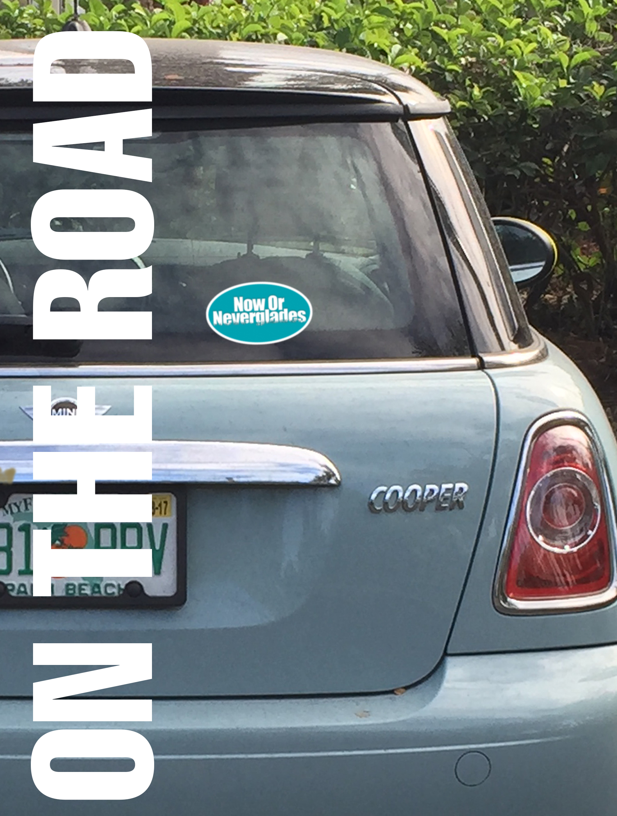 car_(002).jpg