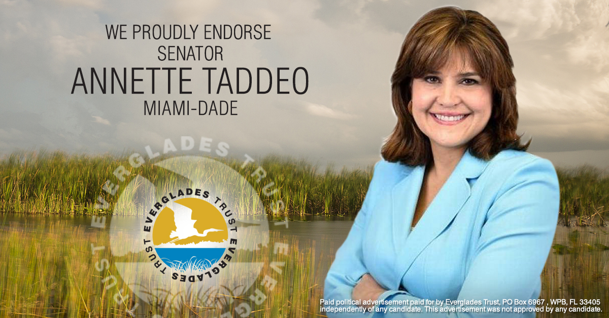 Senator Annette Taddeo is a small business owner and a working mom from South Dade who moved to this country as a teenager, put herself through college and has lived the American Dream. An active community leader for over 30 years, Annette is proud to call South Dade home, for her family and her business. In 2017, Annette was elected Florida State Senator for District 40.  Senator Taddeo has been a champion for a multi-faceted approach that keeps our water and our community safe—she has introduced legislation to ban fracking and has sought a ban on offshore drilling to protect our coastline. Tallahassee must do more to boost natural disaster preparedness and restore our precious Everglades, which why she co-sponsored the Florida Forever Fund which would finally respect the wishes of the vast majority of voters who supported Amendment 1.