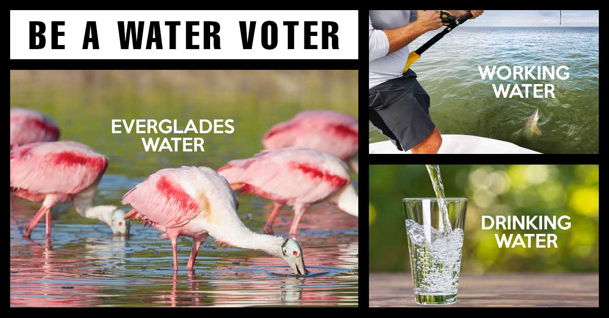 Be a water voter