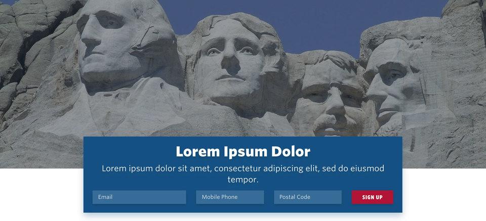NationBuilder Content Block Module: Bottom Signup Form