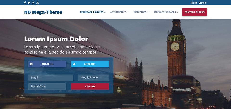 NationBuilder Content Block Module: Signup Form