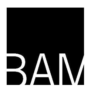 BAM-1.jpg