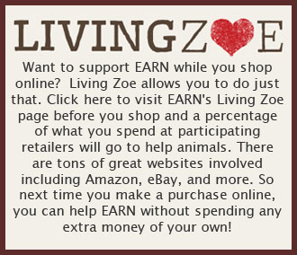 Shop for EARN