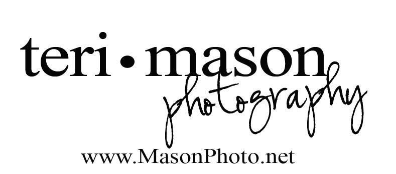 mason_logo_teri.jpg
