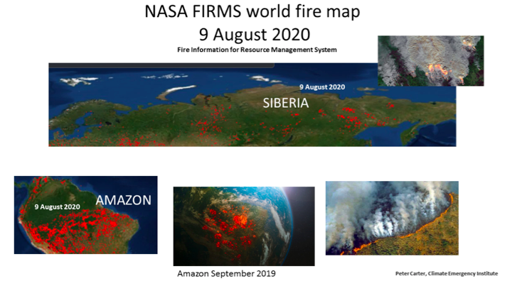 Global fire map August 2020