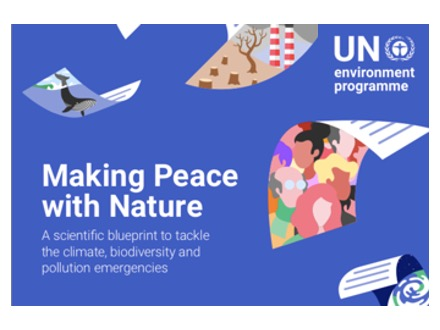 Make Peace with Nature pdf cover (adapted)