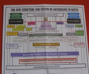 Chart depicting the government under the new consitution (Photo by Tyler Sadonis
