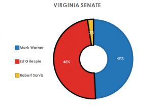 Virginia Senate Race