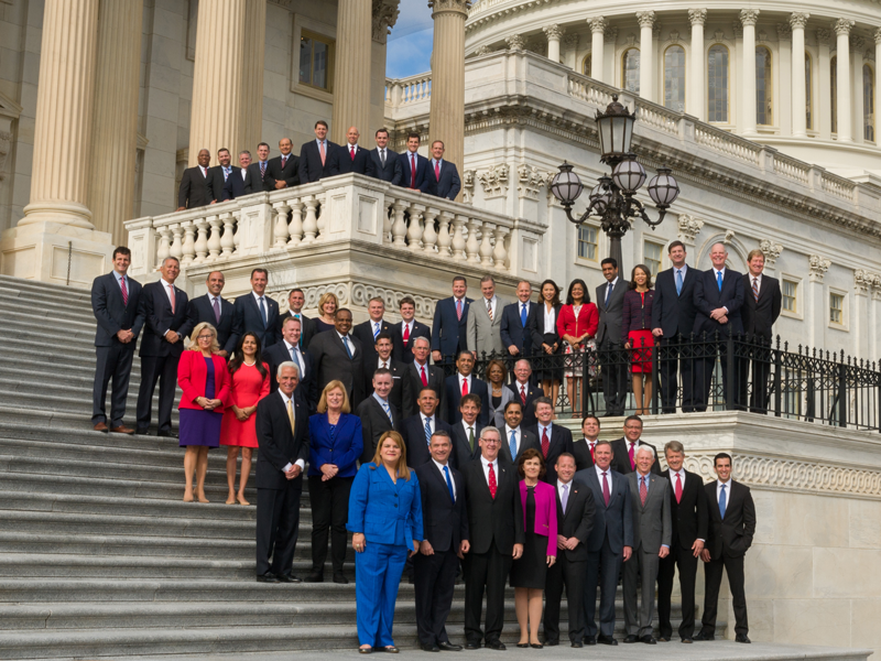 The 115th Congress: Some Findings About Its Newest Members