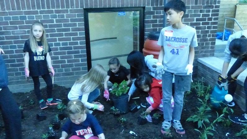 Gardening at MR