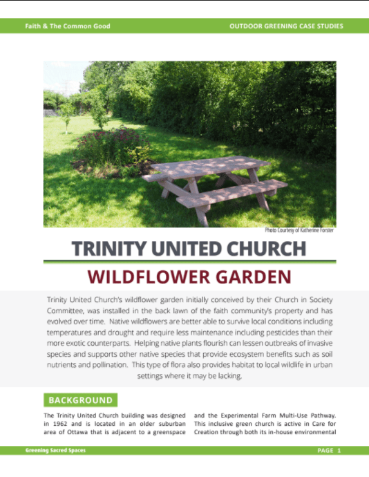 Trinity United