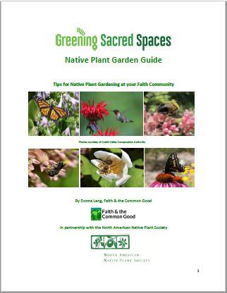 Native Plant Garden Guide