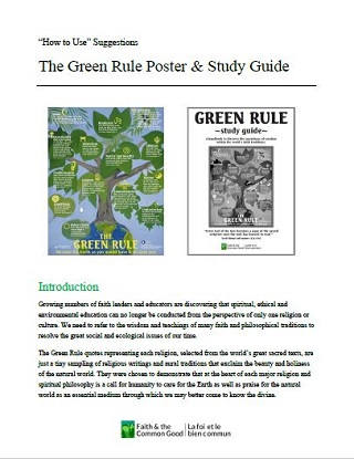 Green Rule How to