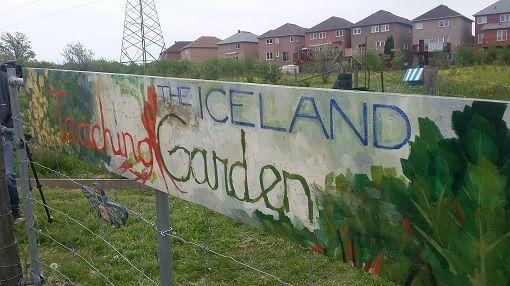 Iceland Teaching Garden