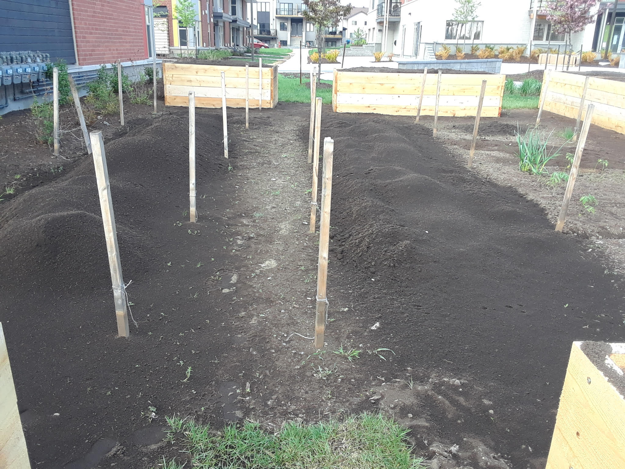 New soil for the Community Gardens