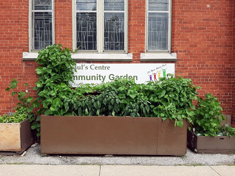 1-community-garden.jpg